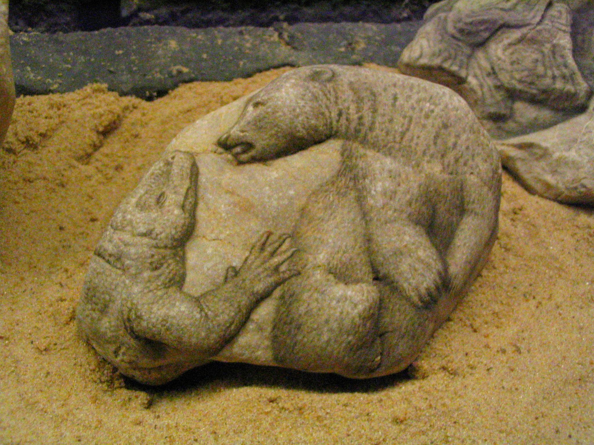 Centro cultural recoleta fuera de contexto for Pintura para piedra natural