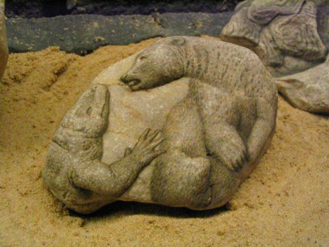 Petropicto de Ciruelo